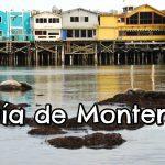 ¿Qué ver en Monterey?